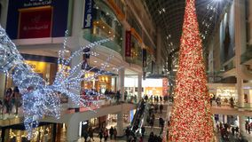 Массивнейший северный олень и рождественская елка освещая путь для покупателей в моле стоковое фото rf