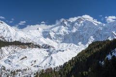Массив в зиме, Chilas горы Nanga Parbat, Gilgit Baltistan Стоковые Фотографии RF