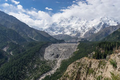 Массив в пасмурном дне, Fairy луг горы Nanga Parbat, Chilas Стоковая Фотография RF