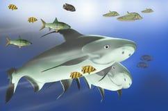 Массы рыб свежей воды Стоковые Изображения