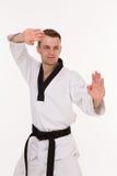 Мастер боевых искусств Стоковое Фото