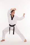 Мастер боевых искусств Стоковое фото RF