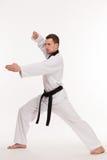 Мастер боевых искусств Стоковое Изображение RF