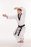 Мастер боевых искусств Стоковые Фото
