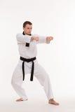Мастер боевых искусств Стоковые Изображения RF