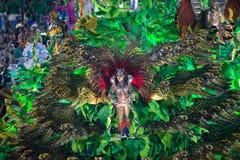 Масленица 2014 - Рио-де-Жанейро Стоковое фото RF