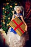 Масленица рождества стоковая фотография rf