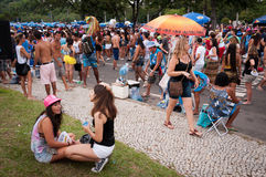 Масленица улицы Рио-де-Жанейро Стоковая Фотография