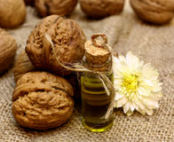 Масло естественного КУРОРТА косметическое от чокнутых грецких орехов и осень цветут Стоковое Изображение RF