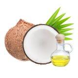 масло иллюстрации падения кокоса стилизованное Стоковое Изображение