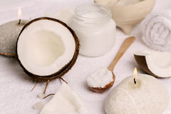 масло иллюстрации падения кокоса стилизованное Стоковая Фотография RF