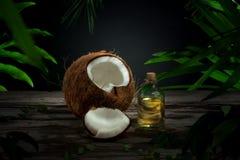 масло иллюстрации падения кокоса стилизованное Стоковое Фото