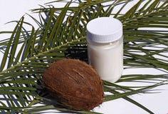 масло иллюстрации падения кокоса стилизованное Стоковые Изображения RF