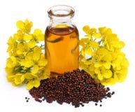 Масло мустарда с цветком Стоковые Фото