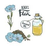 Масло семян льна в стеклянной бутылке с цветками иллюстрация штока