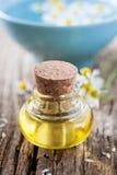 масло стоцвета стоковая фотография rf