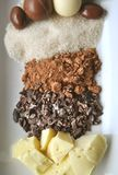 Масло, фасоли, порошок, сахар и шоколады какао Стоковое Изображение RF