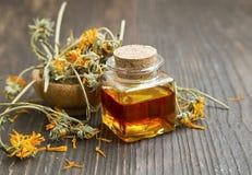 Масло Calendula стоковое фото