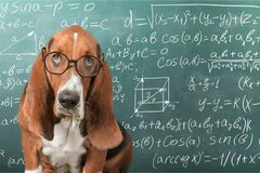 математика стоковое фото