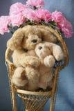 Материнская влюбленность щенка Стоковая Фотография