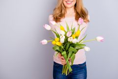 Материнство international свежести цветения цветеня Подрезанное closeu Стоковая Фотография RF