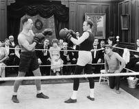 Матч по боксу (все показанные люди более длинные живущие и никакое имущество не существует Гарантии поставщика что будет никакой  Стоковое Изображение