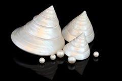 Мать красотки перлы Стоковое Изображение RF