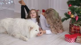 Мать, дочь и собака лежа около рождественской елки акции видеоматериалы