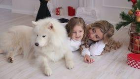 Мать, дочь и собака лежа около рождественской елки сток-видео