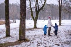 Мать и 2 дет имея потеху outdoors Идя снег леса зимы первый Стоковое фото RF
