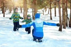 Мать и 2 сынов идут в снежный лес Потеха зимы семьи на каникулы рождества стоковое фото