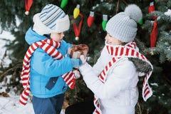 Мать и сын украшают рождественскую елку внешнюю в парке зимы Подарки и рождественские елки Стоковое Фото