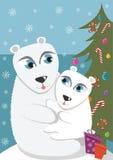 мать медведя младенца приполюсная Стоковое Изображение