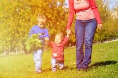 Мать при 2 дет идя в парк осени Стоковое Фото