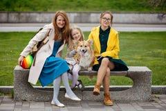 мать с ее дочерьми и собакой на парке стоковые фотографии rf