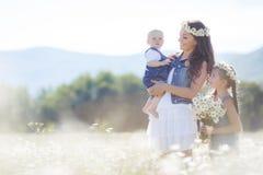 Мать с детьми в поле лета зацветая маргариток Стоковые Фото