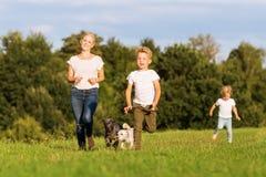 Мать с 2 мальчиками и 2 собаками бежит сверх луг Стоковое фото RF
