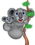 Мать шаржа и коала младенца Стоковые Изображения