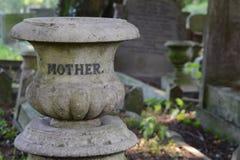 мать Стоковое Фото