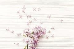 мать s дня счастливая положение весны плоское с сиренью tenderl цветет I Стоковое Фото