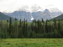 Маунт Robson Стоковое фото RF