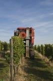 машина виноградины Стоковые Фото