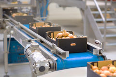 Машина в пищевой промышленности стоковые изображения rf