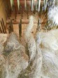 Машина для расчесывать шерсти овец дома Стоковое Фото