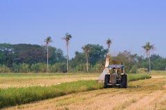 Машина жатки в поле риса Стоковое Изображение
