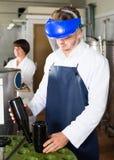 Машина мужского работника работая на фабрике игристого вина Стоковые Фотографии RF