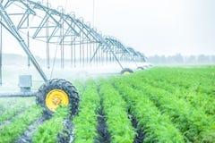 машина полива земледелия Стоковое Изображение