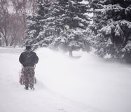 Машина снега стоковые фото