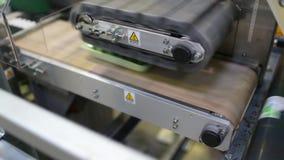 Машина упаковки для огурца на фабрике сток-видео