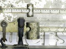 маштаб луча Стоковые Фотографии RF